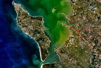 Oléron - Aerial photograph of Oléron