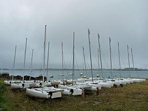 Île de Berder-Catamarans.jpg