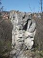 Ördög-orom Quarry Conservation Area. Cliff. - Budapest.JPG