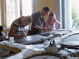 Paintings conservator - Paintings conservators at work