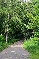 Восточная часть парка Нивки. Фото 5.jpg