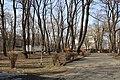 Дендрарій Київського зоопарку (масив дерев) IMG 3611.jpg