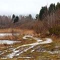 Дорога по берегу - panoramio.jpg