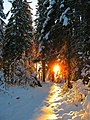 Закат на Русском Севере.jpg