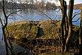 Камінь Коцюбинського P1200460.jpg