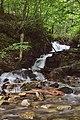 Красотата на природата. Рила планина, България, 2015.JPG