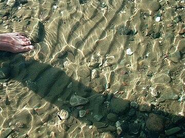 Мелкие, «обычные», песчаные знаки ряби в зоне вдольбереговых течений на мелководном пляже Телецкого озера, Алтай. Июль 2010.