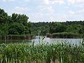 Озеро Баластне.jpg