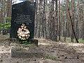 Пам'ятний знак на місці загибелі льотчика В.М.Кагановича, с. Ворони,.jpg