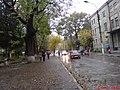 Самбір, осінь, дощ, вул Ів. Франка - panoramio.jpg