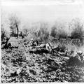 המאורעות בארץ ישראל 1937. כוח ערבי במארב לכוחות הבריטים-PHL-1088014.png