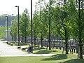新横浜公園 - panoramio.jpg