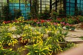 杉木溪玻璃花坊 Shanlinxi Garden Under Glass - panoramio.jpg