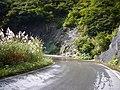 酷道352号、洗い越し - panoramio.jpg