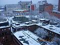 雪后的ASTON校园.JPG