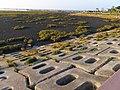 高美濕地 Gaomei Wetlands - panoramio (1).jpg