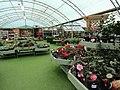 -2019-01-11 Holt Garden Centre, Kelling, Holt (3).JPG