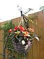 -2019-08-06 Hanging basket, Trimingham.JPG