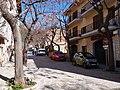 07170 Valldemossa, Illes Balears, Spain - panoramio (10).jpg