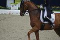 13-04-21-Horses-and-Dreams-Fabienne-Lütkemeier (26 von 30).jpg