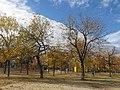 132 Parc del Molinet (Santa Coloma de Gramenet).jpg