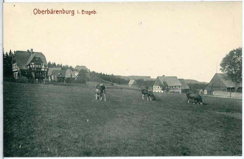File:14186-Oberbärenburg-1912-Blick auf Oberbärenburg-Brück & Sohn Kunstverlag.jpg