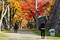 171103 Morioka Castle Morioka Iwate pref Japan02s3.jpg