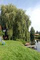 2009-07-29-finowkanal-by-RalfR-71.jpg