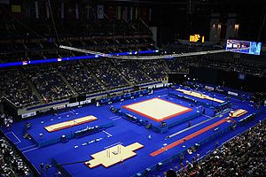 Gymnastics at the 2012 Summer Olympics – Men's vault - North Greenwich Arena