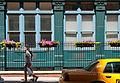 2010 flowerboxes 4758746651.jpg