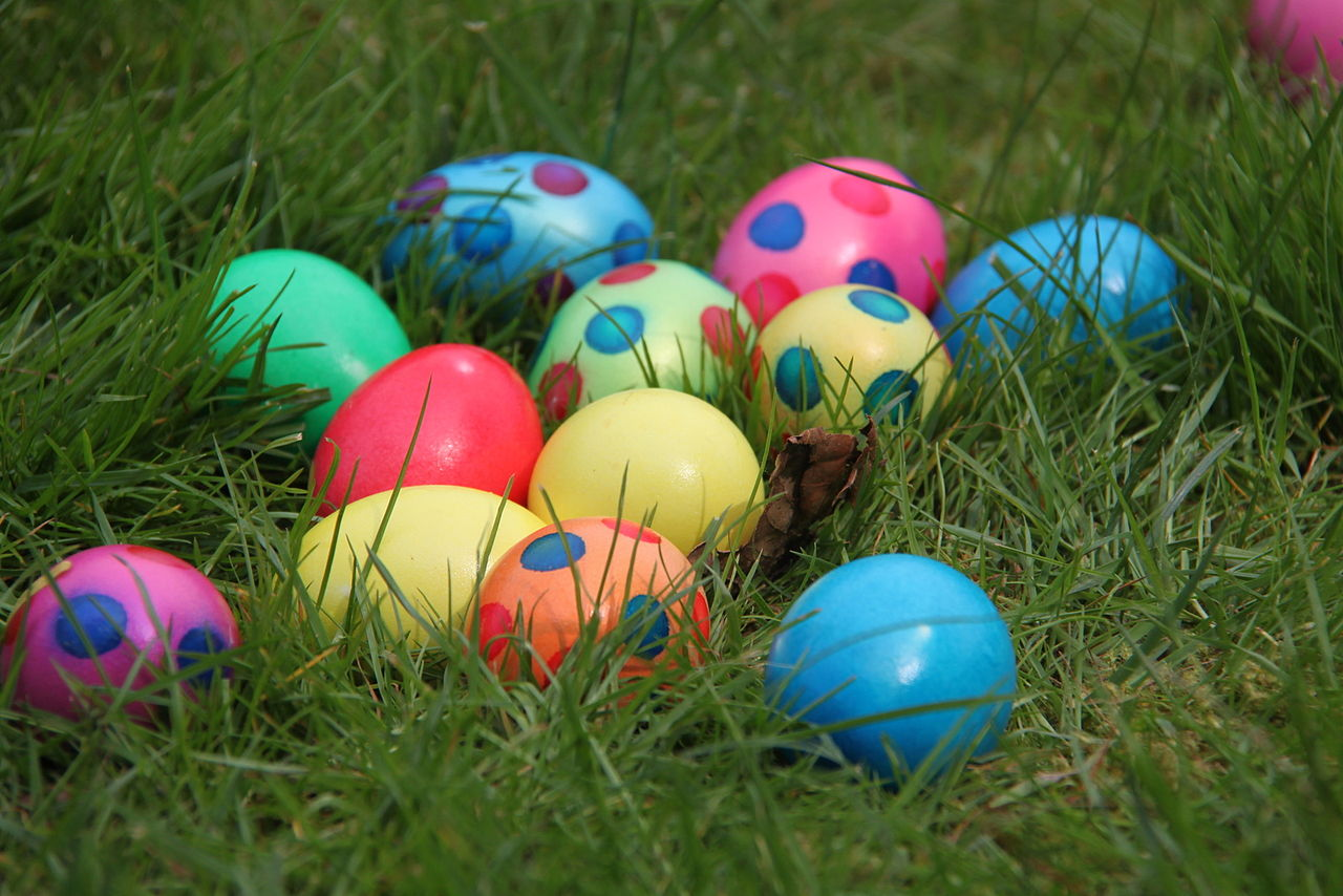 Review Of Easter Egg Hunt Contest