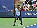 2013 US Open (Tennis) - Qualifying Round - Somdev Devvarman (9715854032).jpg