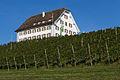 2014-Freienbach-Leutschenhaus.jpg