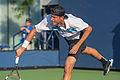 2015 US Open Tennis - Qualies - Jose Hernandez-Fernandez (DOM) def. Jonathan Eysseric (FRA) (20965756595).jpg