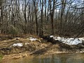 2016-02-08 13 34 17 A tributary joining the main branch of Difficult Run between Vale Road and Lawyers Road in Oakton, Fairfax County, Virginia.jpg