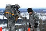 2016 US Army Alaska Winter Games 160127-A-MI003-701.jpg