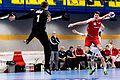 20170114 Handball AUT SUI 6271.jpg