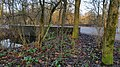 2019 Duikerbrug in Vondelpark West (1).jpg