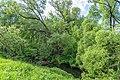 23 Остепненные склоны и балочные леса по правому берегу долины р. Осетрик.jpg