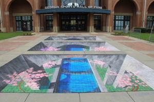 3d chalk art by Tracy Lee Stum Macon's International Cherry Blossom Festival.png