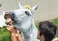 7th Thanks Horse Days Fantastic hose show-3 20140721.JPG