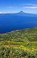 Açores 2010-07-19 (5051332291).jpg