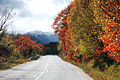 A02 Road to Mavrovo in Autumn 1.JPG