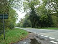 A35 near Knightwood Oak, New Forest - geograph.org.uk - 1302624.jpg
