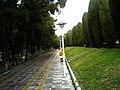 A Rainy Day In Park - panoramio.jpg