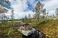 A minor pond on Kivitunturi, Savukoski, Lapland, Finland, 2021 June.jpg
