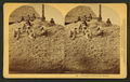 A pyramid of cotton seed, Florida, by Kilburn, B. W. (Benjamin West), 1827-1909.png