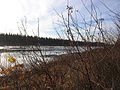 A shot of the Hay River in late fall -b.jpg