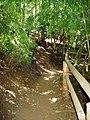 Acceso al mirador de las Siete Tazas en el Parque Nacional Siete Tazas.jpg