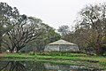 Acharya Jagadish Chandra Bose Indian Botanic Garden - Howrah 2011-02-20 1633.JPG